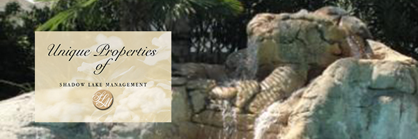 Shadowlake Management logo with water feature in the background